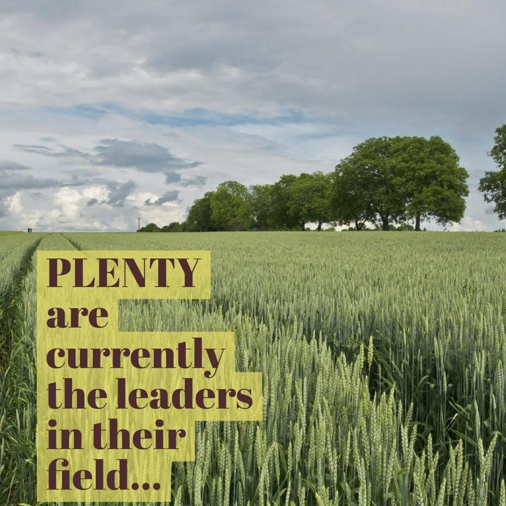 plenty leaders in field