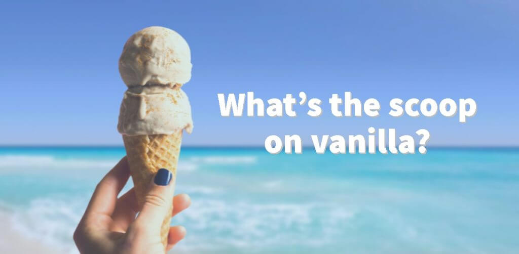 vanilla icecream 1 1024x502 - What's the scoop on vanilla?