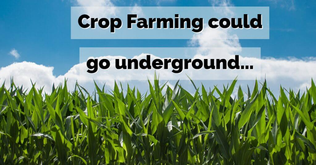 My Post 4 1024x537 - Crop Farming could go underground…