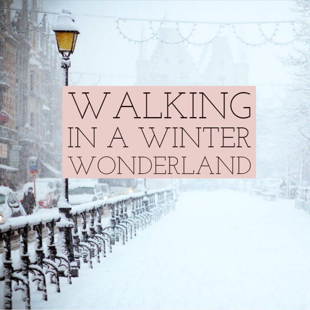 walking3 1024x1024 - Walking in a Winter Wonderland