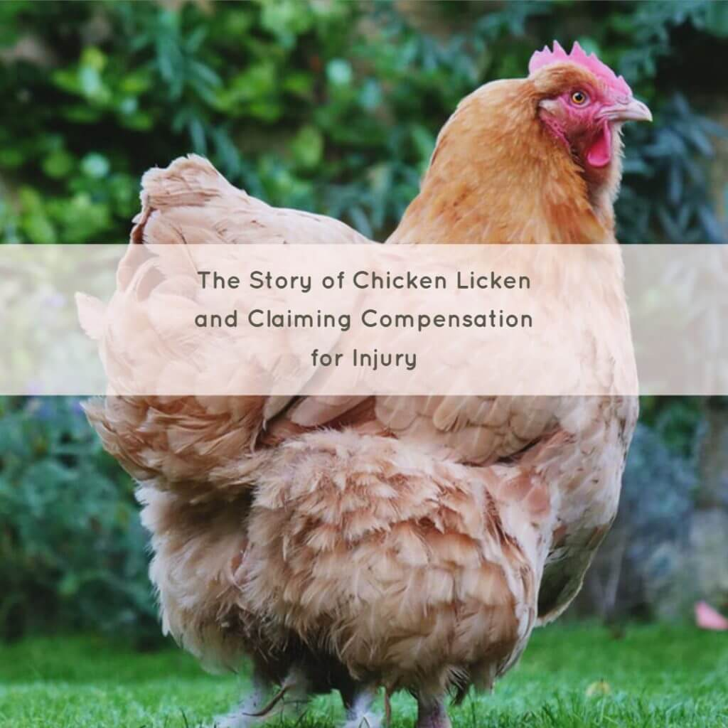 chicken 1024x1024 - The Story of Chicken Licken and Claiming Compensation for Injury