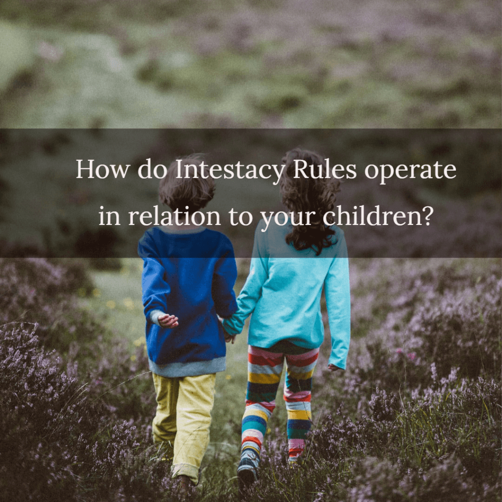 intestacy children 1024x1024 - How do Intestacy Rules operate in relation to your children?